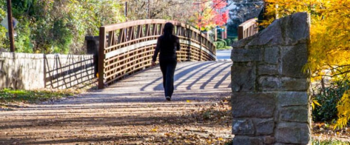 cropped-cropped-01-chastain-park-path-atlanta-running-trails1.jpg